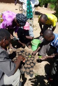 Seminariedeltagarna får praktisera undervisningen om plantuppdrivning och trädplantering. Foto: Maria Holmberg