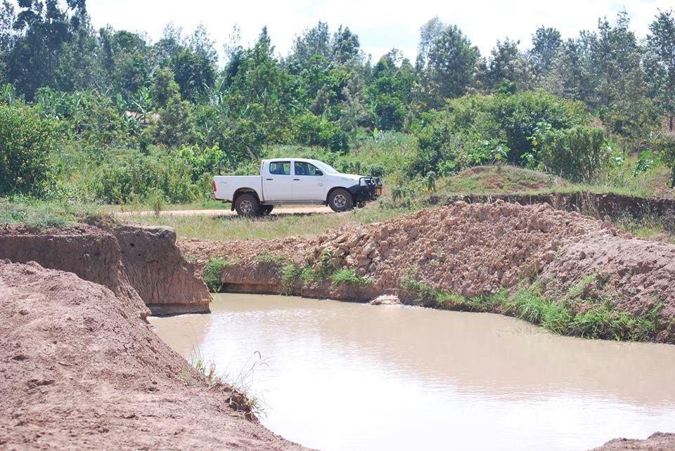 Miljöprojektet som syns långt